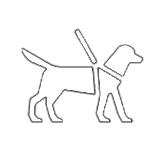 Dog guides and service animals